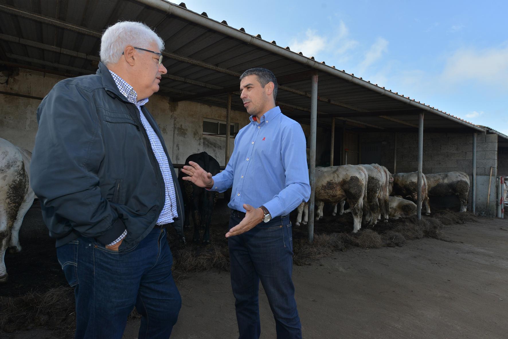 Agricultura destinará 200.000 euros a infraestructuras en el municipio herreño de El Pinar
